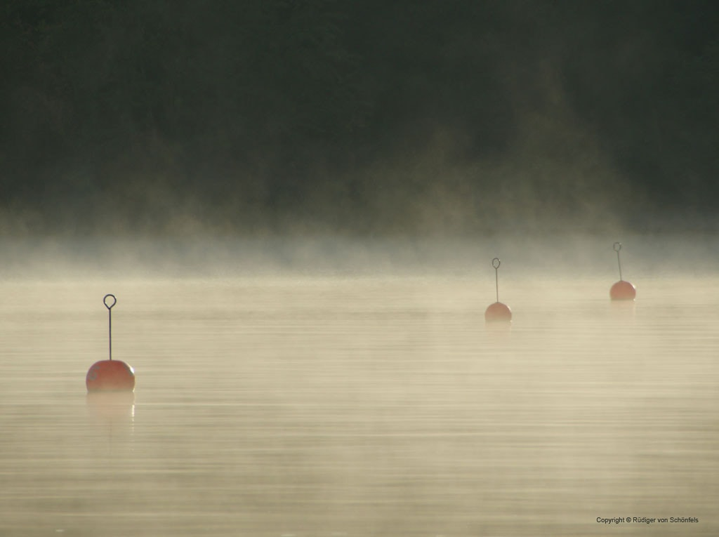Bojen im Nebel auf der Havel / copyright © Rüdiger von Schönfels
