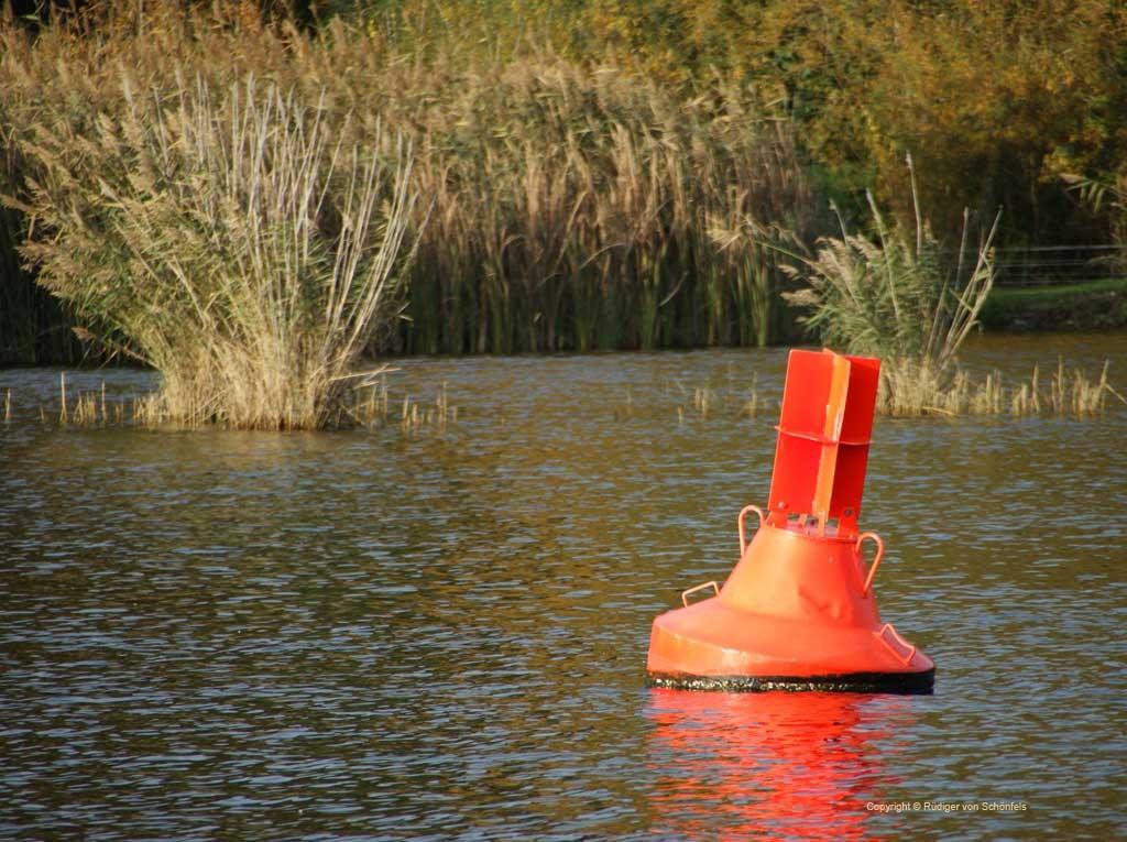 Schilf mit roter Fahrwassertonne in der Havel / copyright © Rüdiger von Schönfels